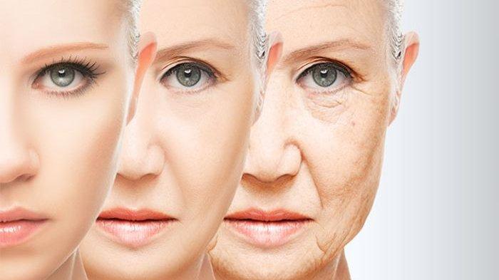 9 Penyebab Penuaan Dini pada Kulit dan Cara Mencegahnya, Termasuk Tidak  Menghapus Make-Up Saat Tidur - Tribunnews.com Mobile
