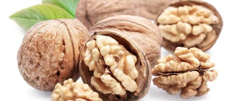 Berbagai Manfaat Kacang Walnut - Artikel Pertanian Terbaru | Berita  Pertanian Terbaru